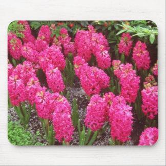 Red Hyancinthus orientalis Jan Box flowers Mousepads
