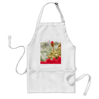 Red hydrangeas buds adult apron