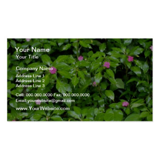 Red Impatient flowers El Yunque Rainforest Puert Business Card Template