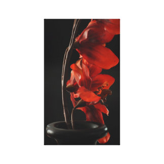 Red in Black Canvas Print