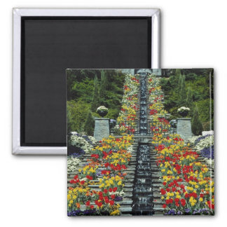 Red In the park, Mainau flowers Magnet