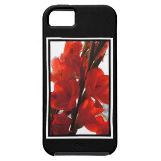 Red Iris iPhone 5 Cases