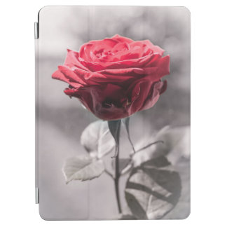 Red Is The Rose Single Red Rose White Misty iPad Air Cover