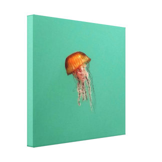 Red Jellyfish Stretched Canvas Print