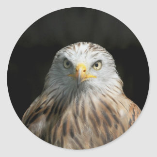Red Kite Classic Round Sticker