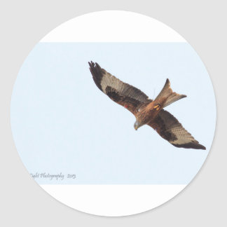 Red Kite In Sky Classic Round Sticker