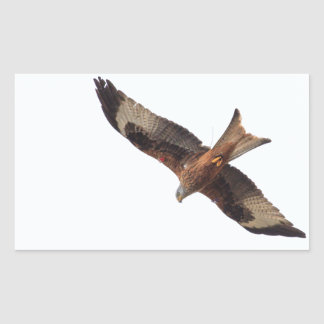 Red Kite In Sky Rectangular Sticker