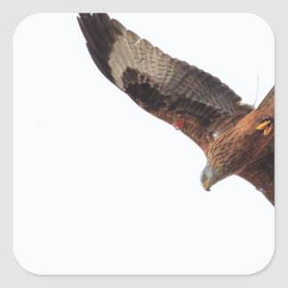Red Kite In Sky Square Sticker