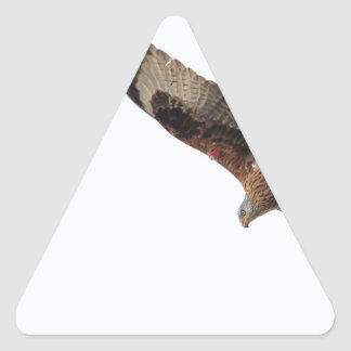 Red Kite In Sky Triangle Sticker