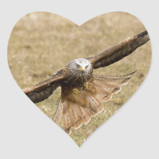 Red Kite (Milvus Milvus) Heart Sticker