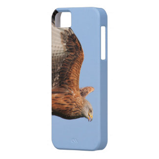 Red Kite Raptor Barely There iPhone 5 Case