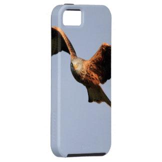 Red Kite Raptor iPhone 5 Case