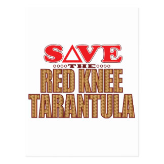 Red Knee Tarantula Save Postcard