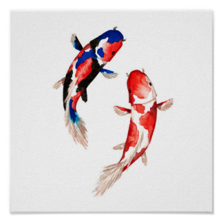 Red Koi Fish Poster
