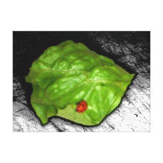 Red Ladybug on Green Leaf Illustration Gallery Wrap Canvas