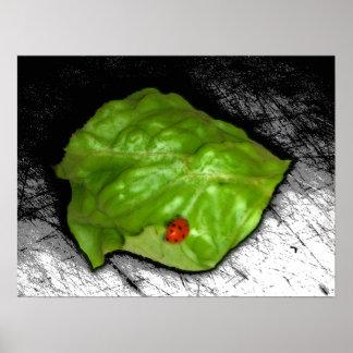 Red Ladybug on Green Leaf Illustration Poster