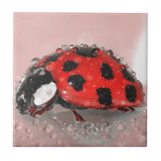 Red Ladybug Small Square Tile