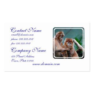 Red Langur Monkeys Business Cards
