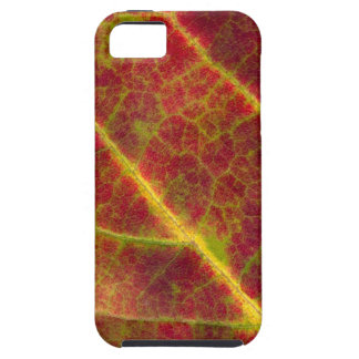 Red Leaf iPhone 5/5S Vibe Case Tough iPhone 5 Case