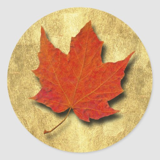 Red Leaf on Gold Round Stickers