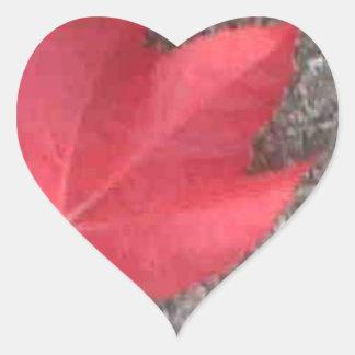 Red leaf on tarmac heart sticker