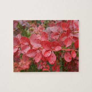 Red Leafs Jigsaw Puzzle