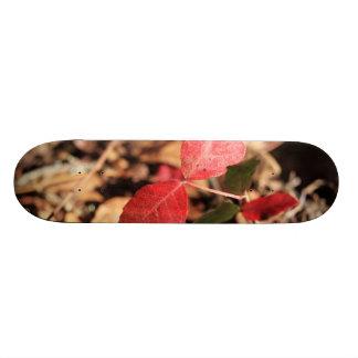 Red Leaves 20 Cm Skateboard Deck