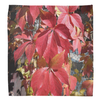 Red Leaves Bandana