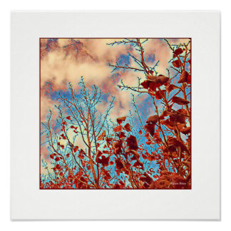 Red Leaves Red Sky Poster
