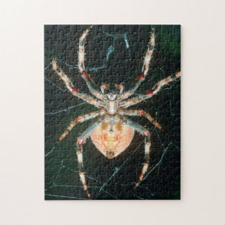 Red-Legged Orb-Web Spider Jigsaw Puzzle