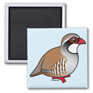 Red-legged Partridge Square Magnet