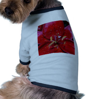 Red Lily After Rainfall Dog Clothing