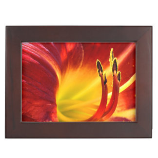 Red Lily Memory Box