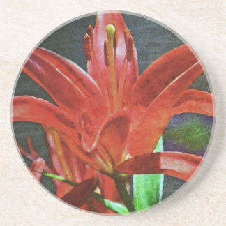 Red Lily Textured Beverage Coasters