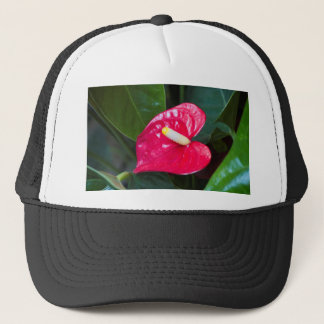 red lily trucker hat