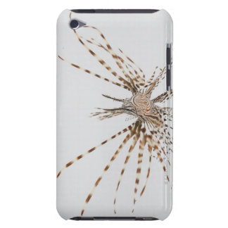Red lionfish (Pterois volitans) Barely There iPod Cover