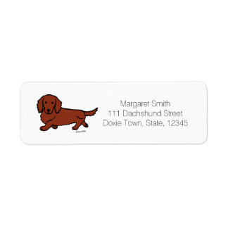 Red Long Haired Dachshund 1
