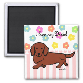 Red Long Haired Dachshund 1 Square Magnet
