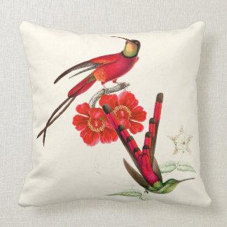 Red Long Tailed Hummingbird Birds Flowers Pillow