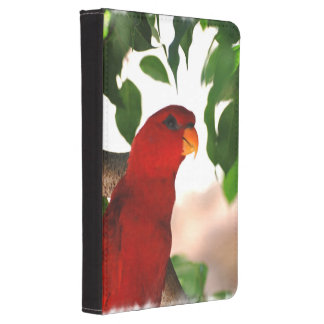 Red Lorikeet Kindle Touch Cover