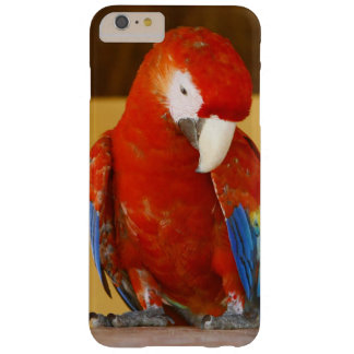Red Macaw Barely There iPhone 6 Plus Case