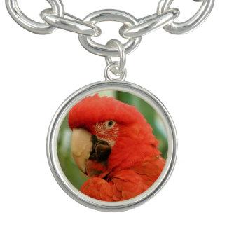 Red macaw charm bracelet