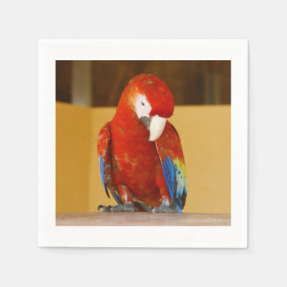 Red Macaw Disposable Serviette