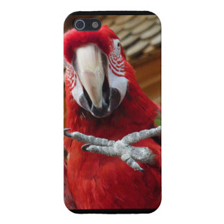 Red Macaw Hi5 iPhone 5/5S Glossy Finish Case iPhone 5 Covers