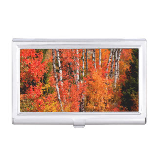 Red Maple (Acer Rubra) And Aspens Business Card Holder