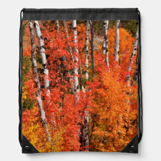 Red Maple (Acer Rubra) And Aspens Drawstring Bag