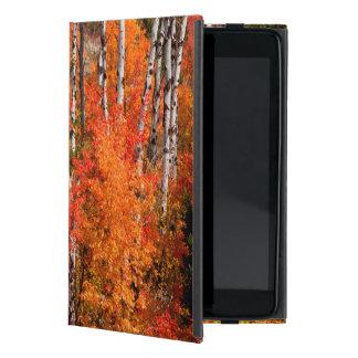 Red Maple (Acer Rubra) And Aspens iPad Mini Case