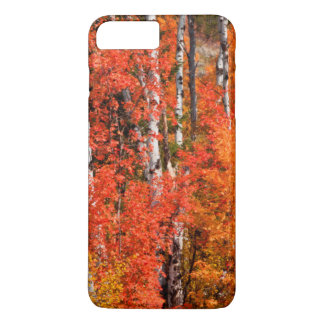 Red Maple (Acer Rubra) And Aspens iPhone 8 Plus/7 Plus Case