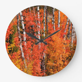 Red Maple (Acer Rubra) And Aspens Large Clock