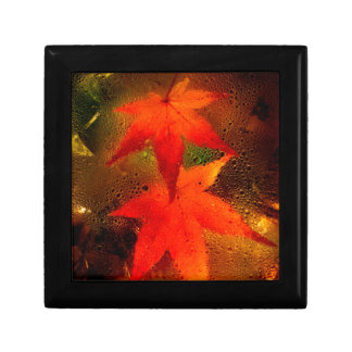 Red Maple Gift Boxes